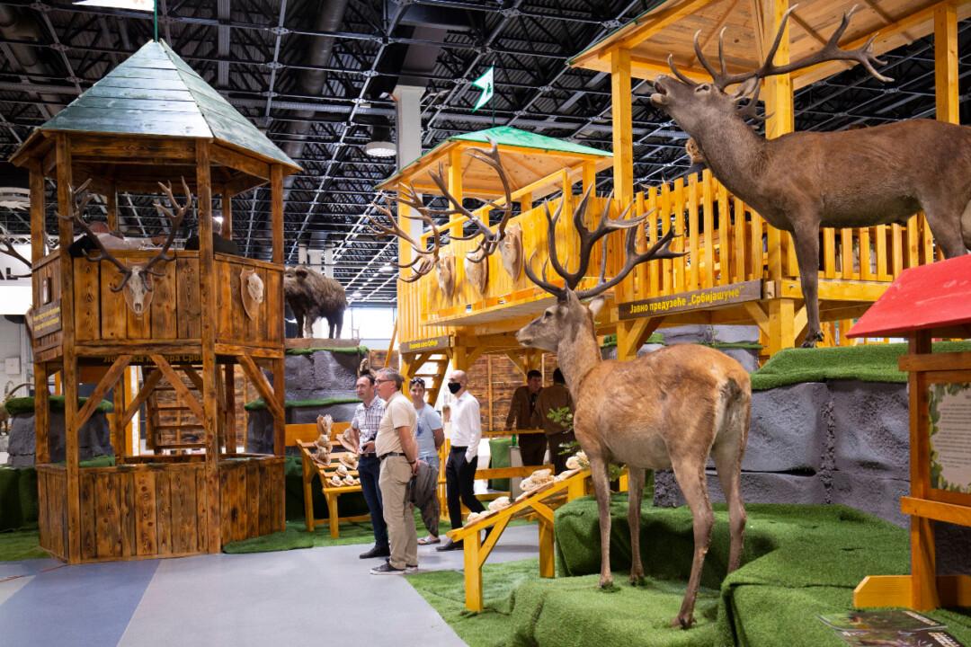 Megnyílt a vadászati világkiállítás